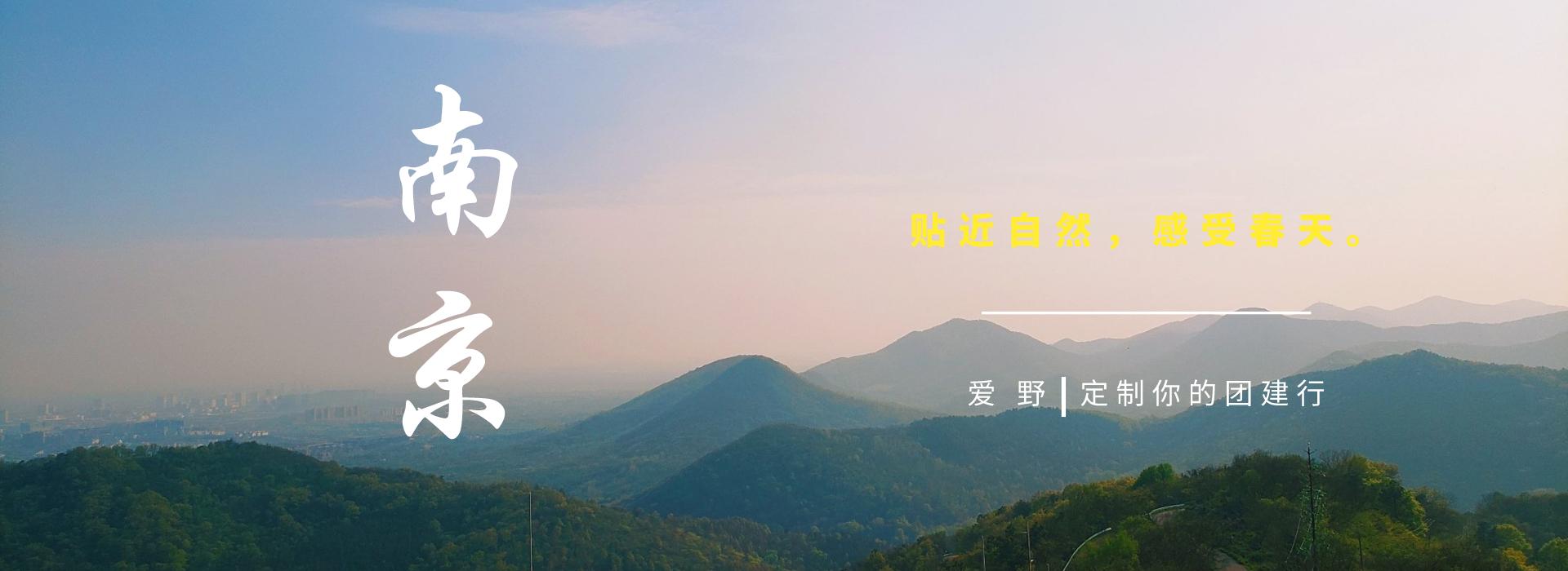 南京的春与你